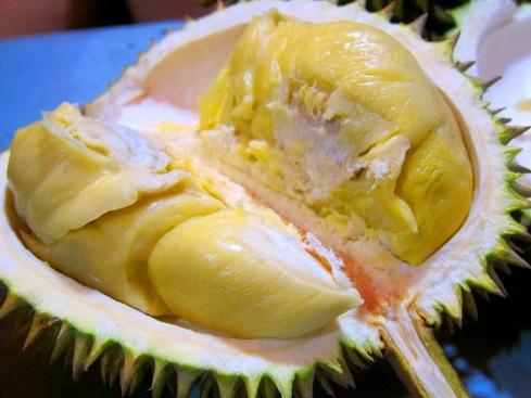 jual tanaman buah di Bogor
